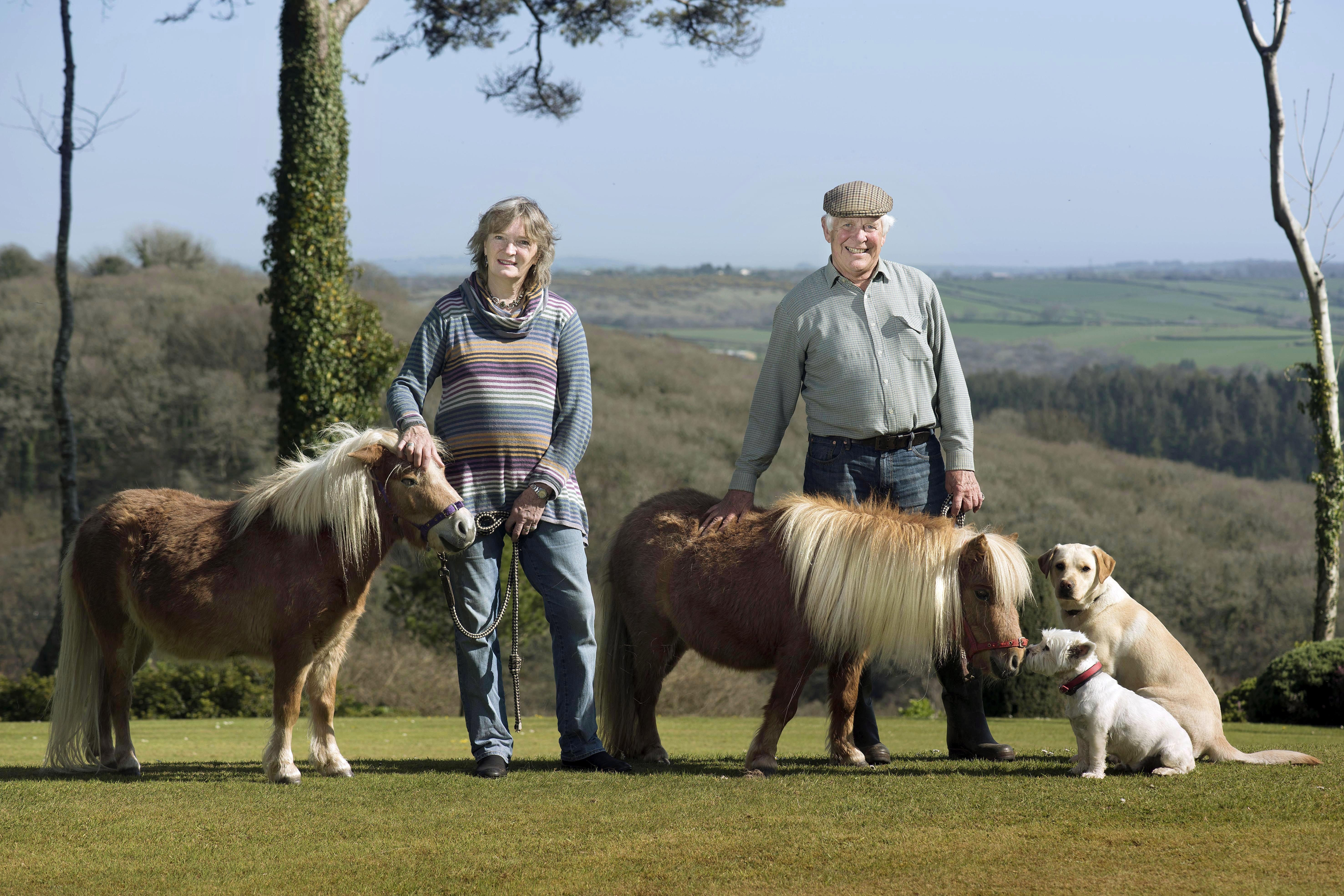 Robin and Louella with horses and dogs